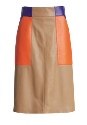 Seplea Colorblock Skirt